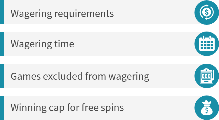 Free spin offer terms